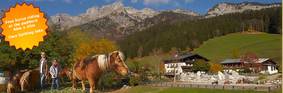 Holiday in the wonderful mountains of Salzburg at Guesthouse Berghof Wildau in Austria